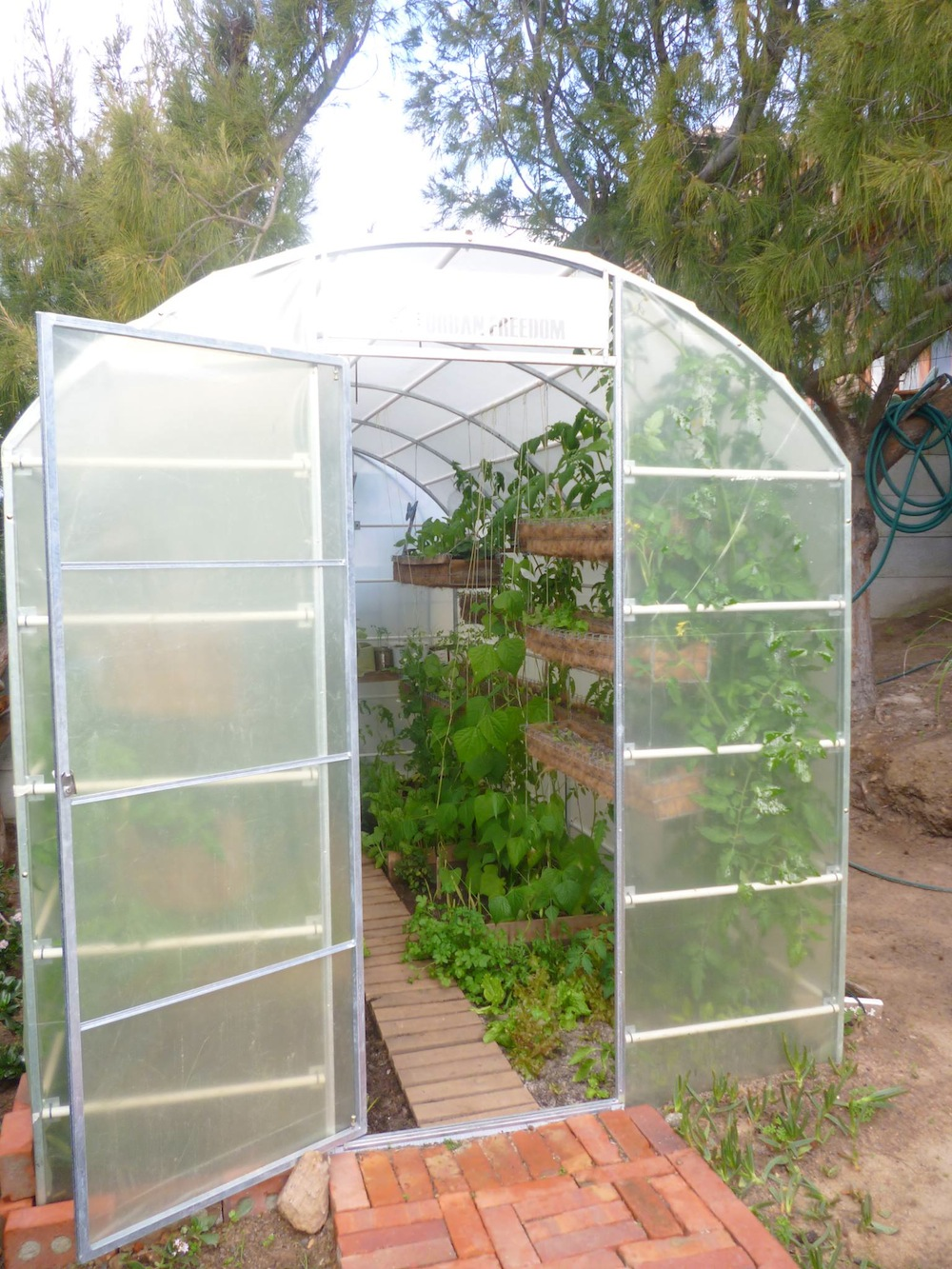 Good use of vertical space in this newly established greenhouse