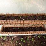 To maximise the available growing space in the greenhouse we recommend these troughs.