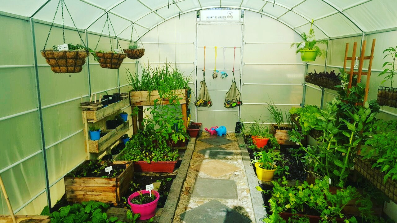 02-greenhouse-inside